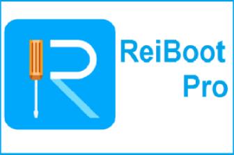 Tenorshare Reiboot Pro 8.1.3.6 Crack + Registration Code 2022